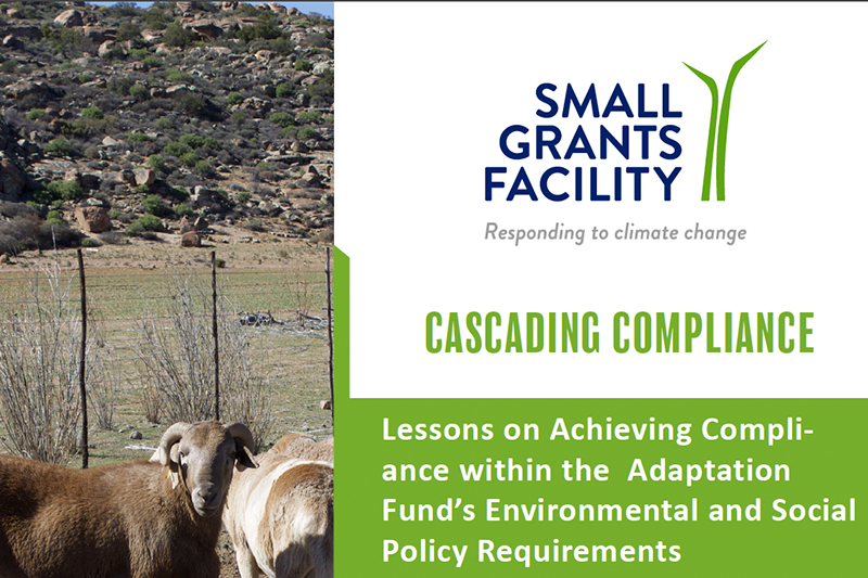 CA SGF Case Study: Cascading Compliance