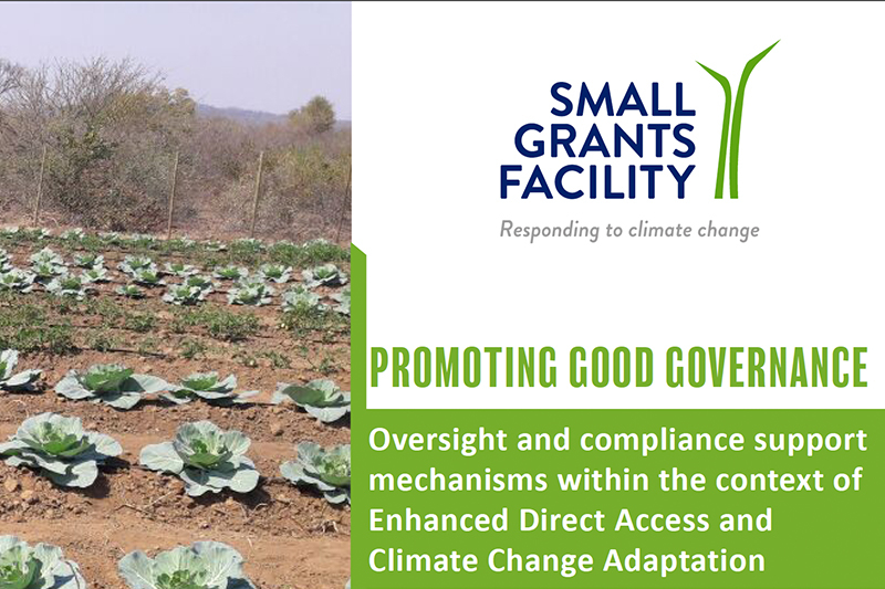 CA SGF Case study: Good Governance
